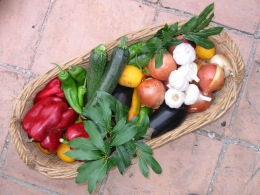 Granada garden fruits