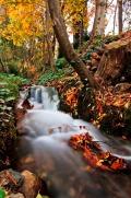 Autumn Sierra Nevada