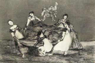Goya disparate feminino