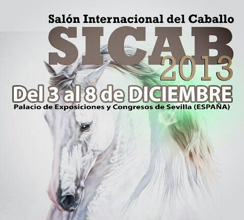 SICAB poster 2013