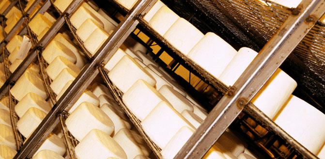 Spanish Idiazabal cheese