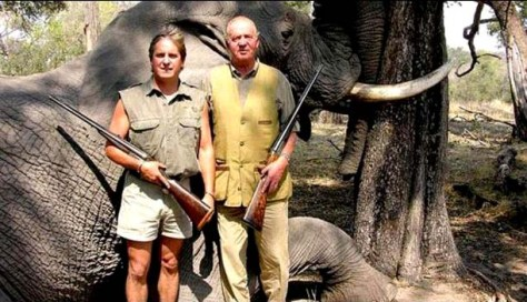 Juan Carlos elephant