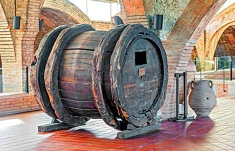 Codorniu winery Spain