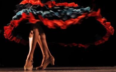 Bailaora flamenca Spain