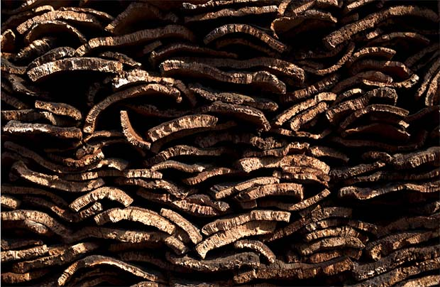 La Almoraima cork