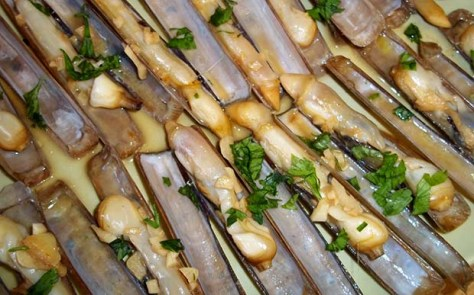 Razor clams Galicia