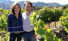 Priorat wine producers