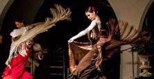 Heeren Foundation flamenco